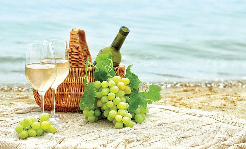 Chardonnay, All Day