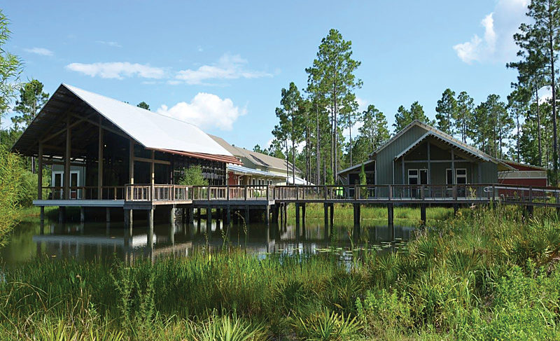 Dine for the Pines to benefit E.O. Wilson Biophilia Center