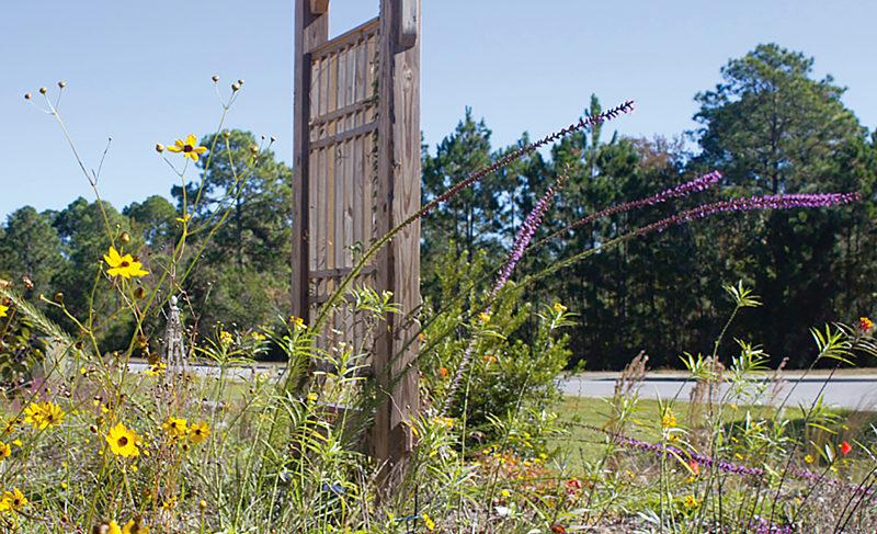 Local Horticulture
