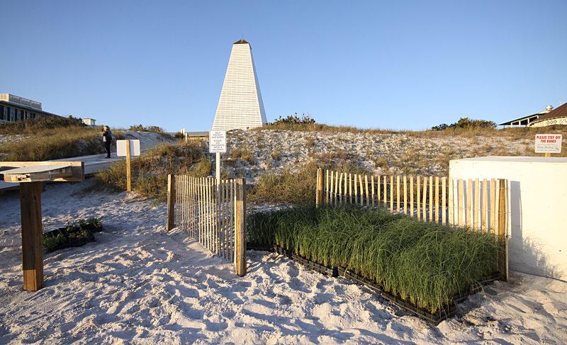 Seaside restores and re-nourishes coastal sand dunes