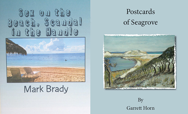Two local authors pen books inspired by the 30A community